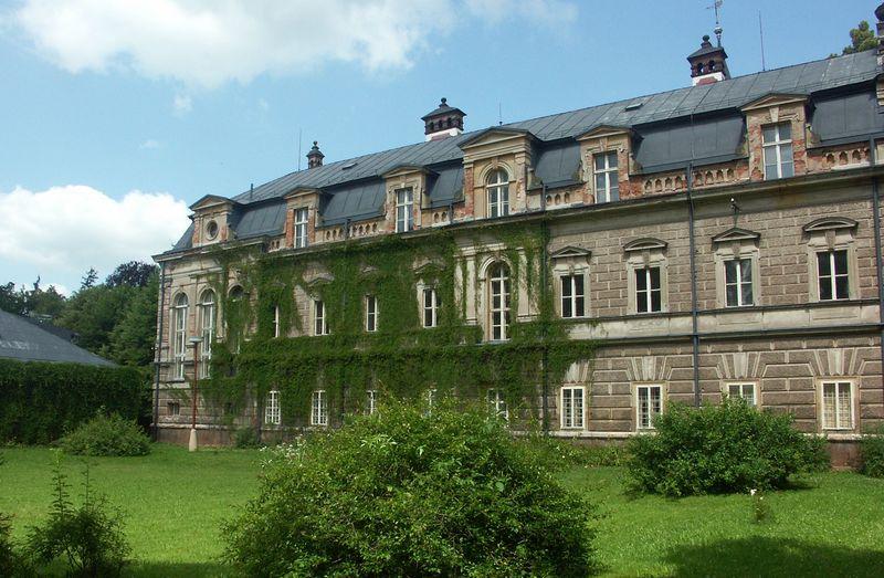 Замок в поселке Долни Олешнице