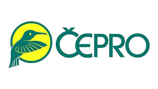 Поиск партнёра для ?epro – вопрос энергетической безопасности