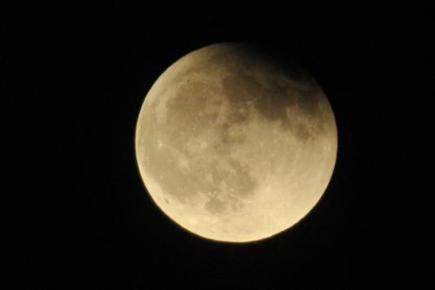 Участок на Луне - популярный рождественский подарок