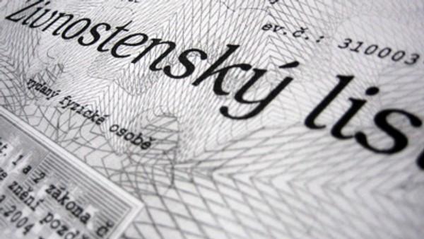 Руководители Ассоциации уверены, что иностранцы отбирают работу у чехов.