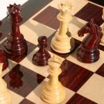 Анатолий Карпов примет участие в молодежном турнире