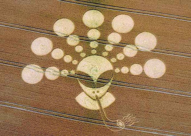Таинственные круги на полях