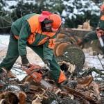 Иностранцы потеряют рабочие места, чехи - найдут (фото Den?k.cz)