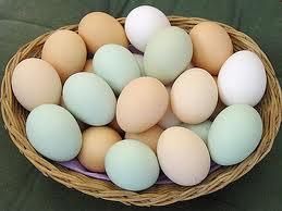 Яйца в Чехии подорожали в два раза
