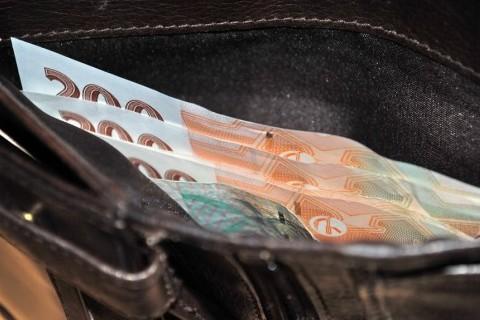 Чехи недовольны экономической ситуацией в стране