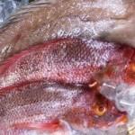 В Праге найден антисанитарный склад с рыбой