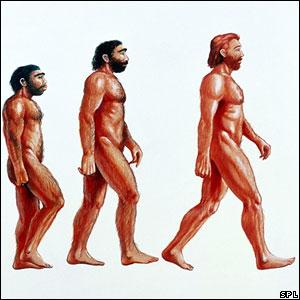 Официально существуют две основные теории происхождения человека