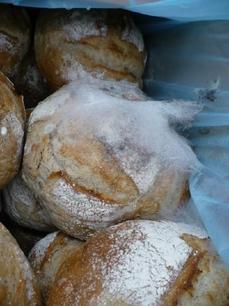 "В ""Кауфланде"" продавали плесневый хлеб"