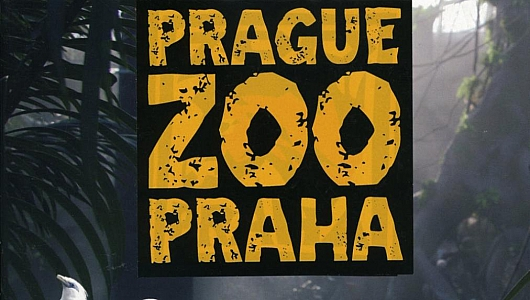 Зоопарк Праги входит в десятку лучших зоопарков мира
