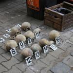 Каждый череп имеет номер