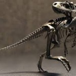 Скелеты динозавров можно будет увидеть на выставке