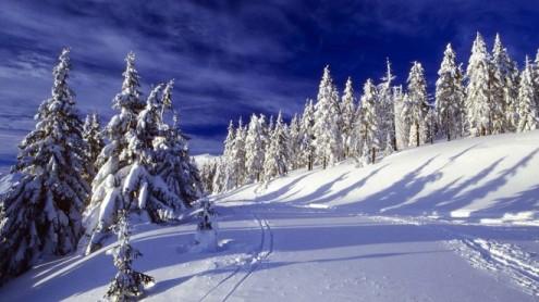 В горах выпало 25 сантиметров снега