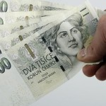 Многие чехи не изучают условия кредитных договоров