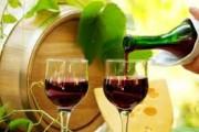 Чехия поможет Молдове улучшить винодельческую отрасль