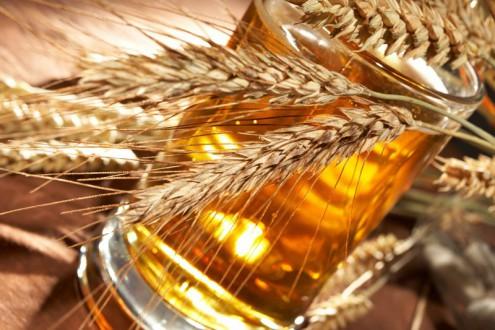 Как рождается чешское пиво