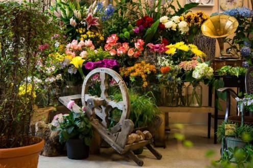 Fleur et Arts chez Suzanne