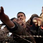 Беженцы и... фашизм