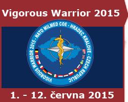 Vigorous Warrior 2015