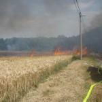 Лесные пожары в Чехии