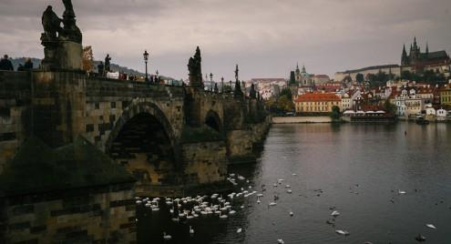 Чехи переносят производство в Россию