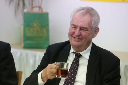 Здоровье Милоша Земана позволяет участвовать в президентских выборах