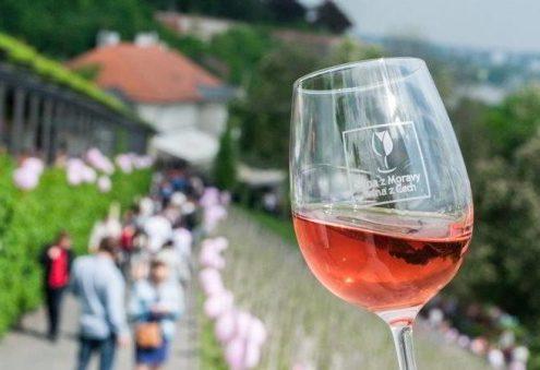 Праздник розового вина в Пражском граде