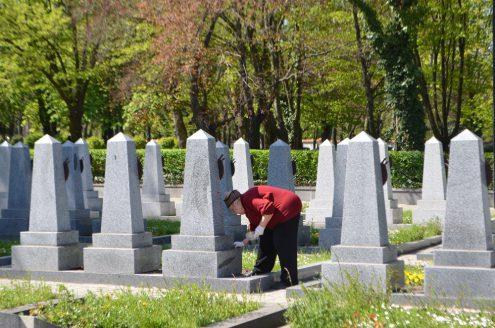 Традиционная уборка на Ольшанском кладбище