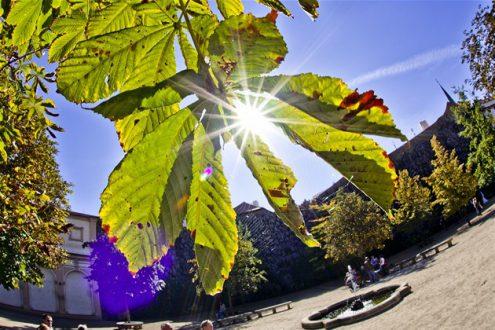 В выходные в Чехии будет тепло и солнечно