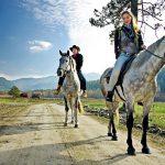 6 мест в Чехии, где можно покататься на лошадях