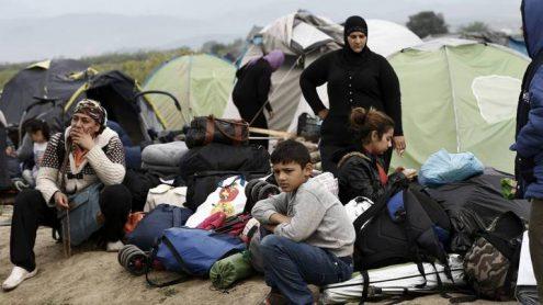 Чехия примет 80 сирийских беженцев