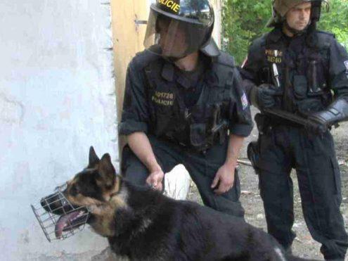 Чешские полицейские отправятся в Венгрию и Македонию