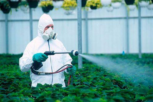 Экологический пестицид массового поражения