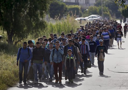 Hundreds of newly-arrived immigrants walk towards a temporary shelter soon after crossing a part of the Aegean Sea from Turkey to Greece, early May 26, 2015. Hundreds of mainly Syrian and Afghan immigrants on Tuesday landed on the Greek island of Kos in the south-eastern Aegean Sea. REUTERS/Yannis Behrakis