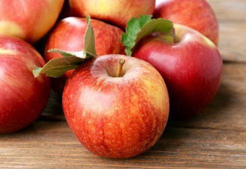 В Праге пройдет праздник яблок и фестиваль сидра