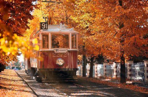 Куда сходить в выходные дни 8-9 октября?