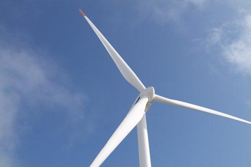 Falkon Capital затянуло в ветроэнергетику
