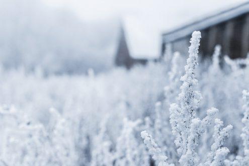 Температура в Чехии может упасть до -20°