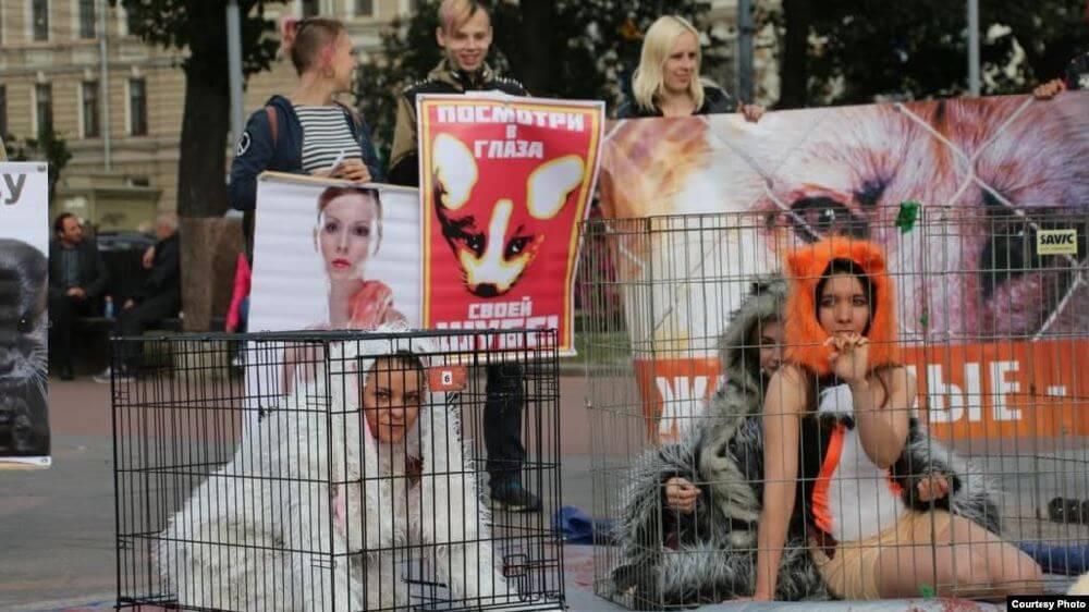 Акция в защиту животных в Санкт-Петербурге - Пражский Телеграф