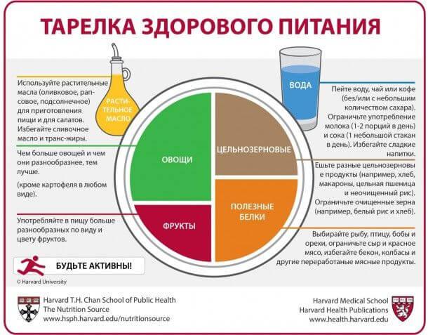 Тарелка здорового питания - Пражский Телеграф