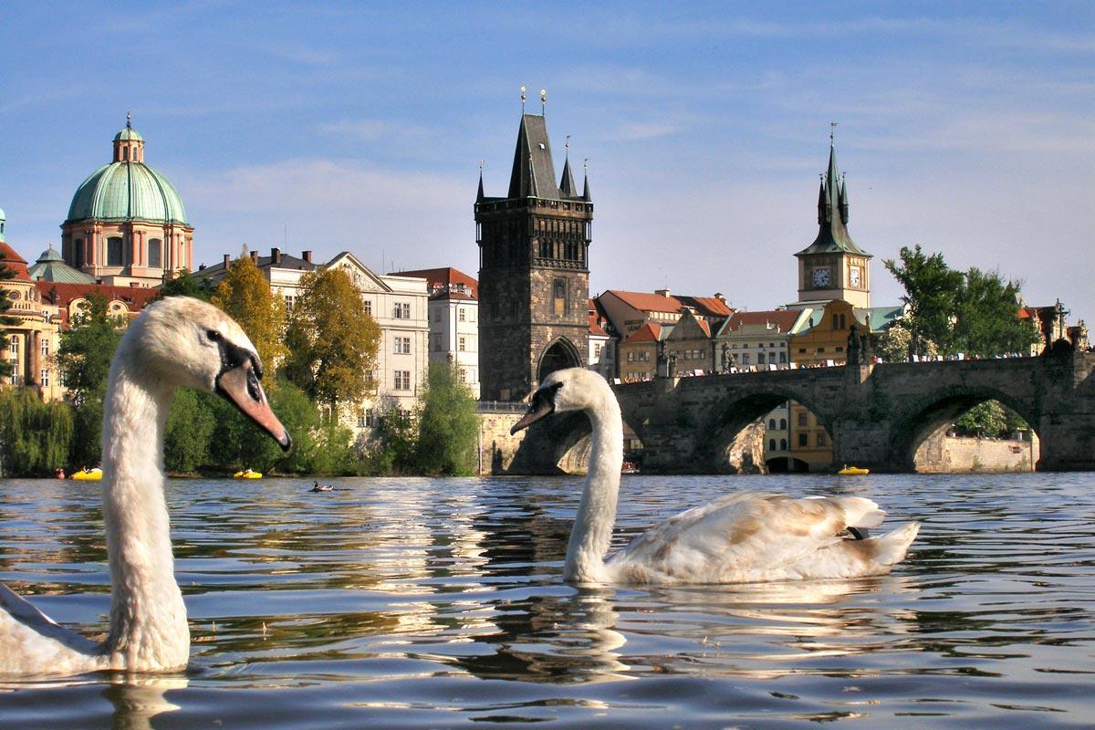 В Чехии побиты температурные рекорды