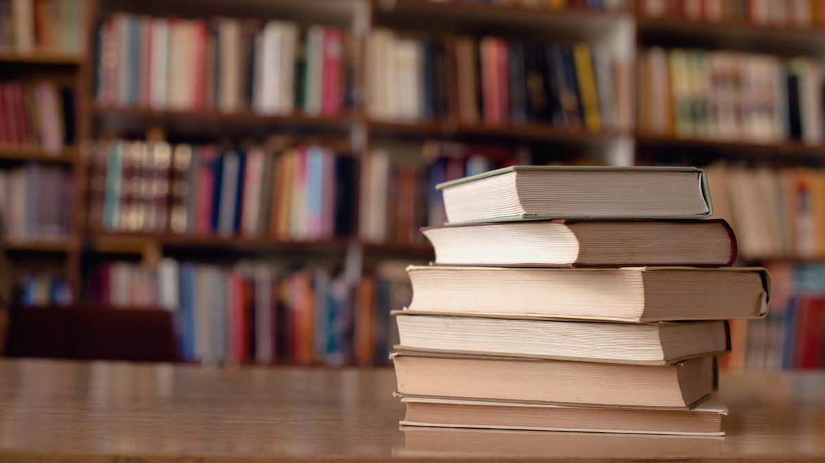 Блатны предложит правительству, чтобы библиотеки могли работать через раздаточные окна