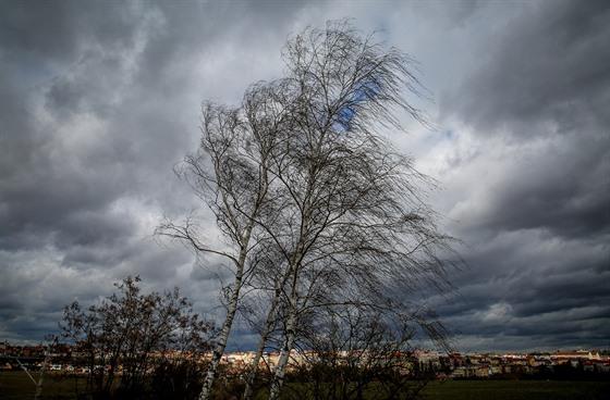 На выходных в Чехии ожидается сильный ветер